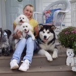 Diana Edwards of Winward Malamutes on porch with Flint, Totti, Maya, and Topper.