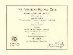 Flint Champion Certificate