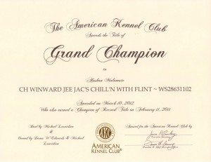 Flint Grand Champion Certificate