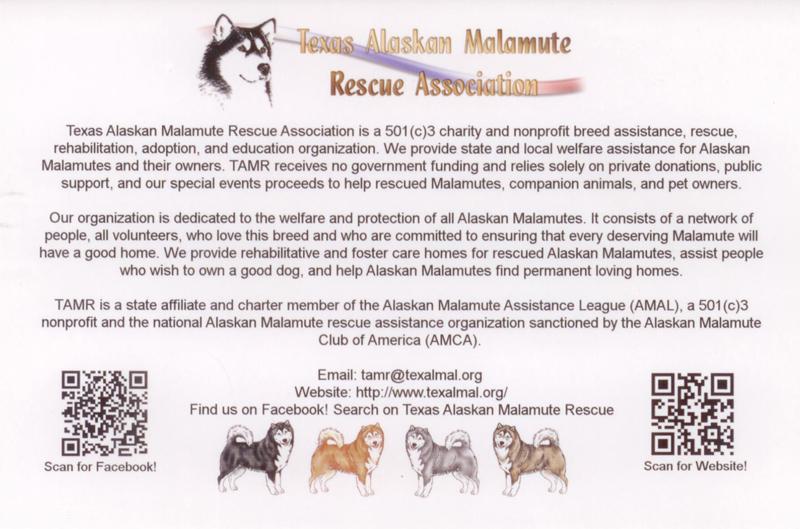 Alaskan Malamute Breed Standard 2