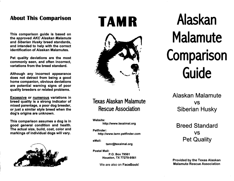 TAMR-Comparison