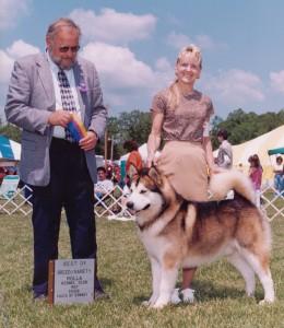 Tazz Best of Breed Rolla, 1998