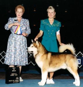 Tazz, Best of Breed Sedalia, 1999