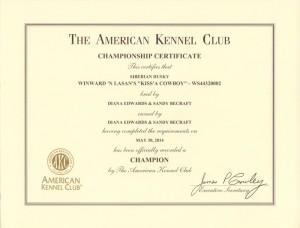 Wrangler Champion Certificate
