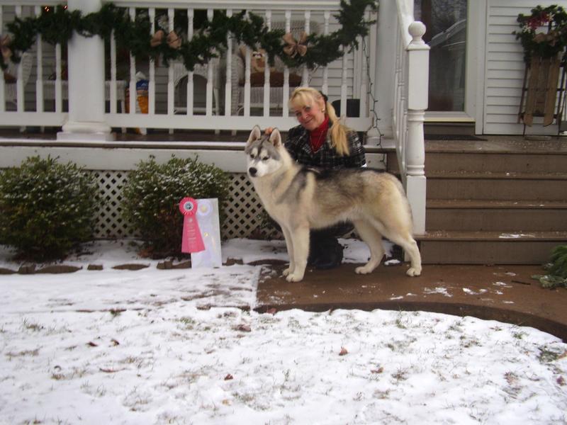 Wrangler Siberian with Diana Edwards